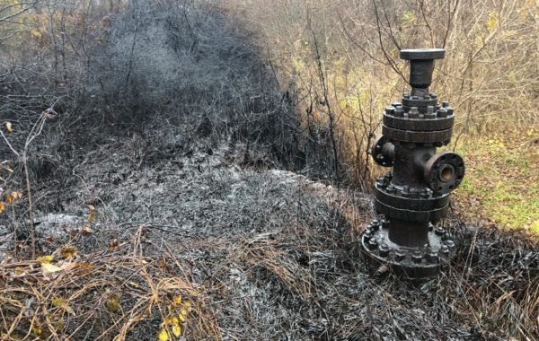 Плановая проверка ООО «РН-Краснодарнефтегаз»