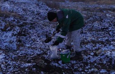 Участие сотрудников филиала ЦЛАТИ по Краснодарскому краю в выездной проверке в г . Краснодар