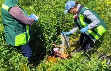 Участие  сотрудников филиала ЦЛАТИ по Краснодарскому краю в выездной проверке в Родниковском сельском поселении